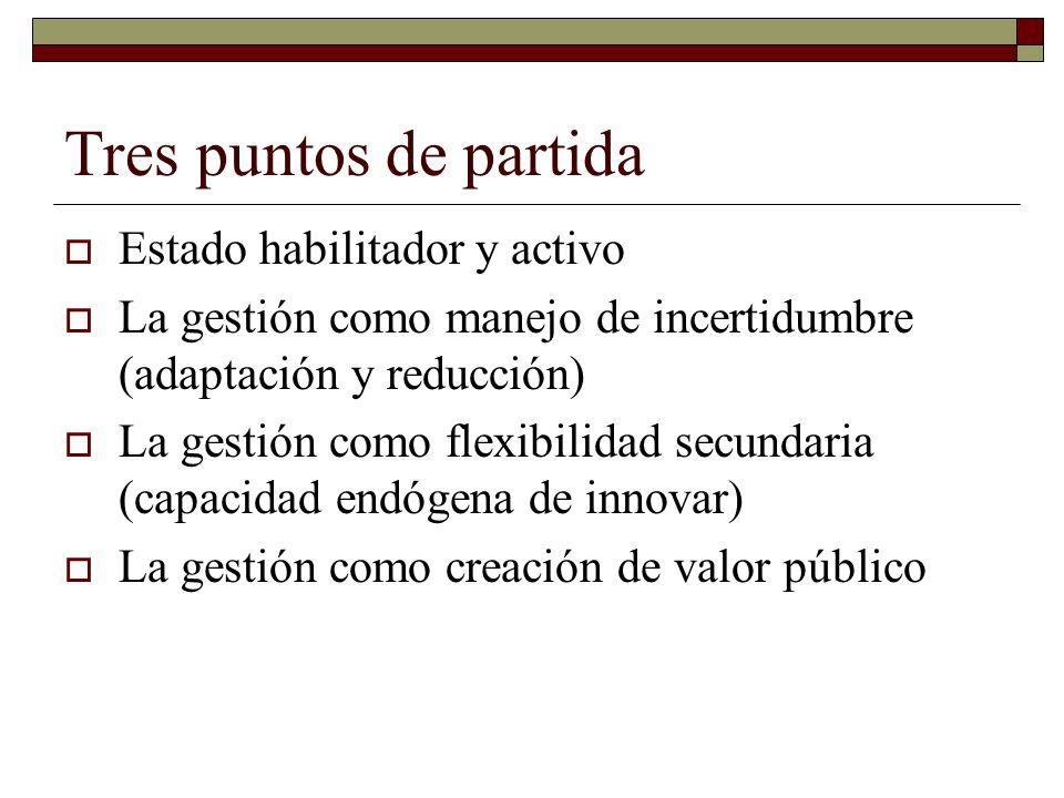 Tres puntos de partida Estado habilitador y activo La gestión como manejo de incertidumbre (adaptación y reducción) La gestión como flexibilidad secundaria (capacidad endógena de innovar) La gestión como creación de valor público