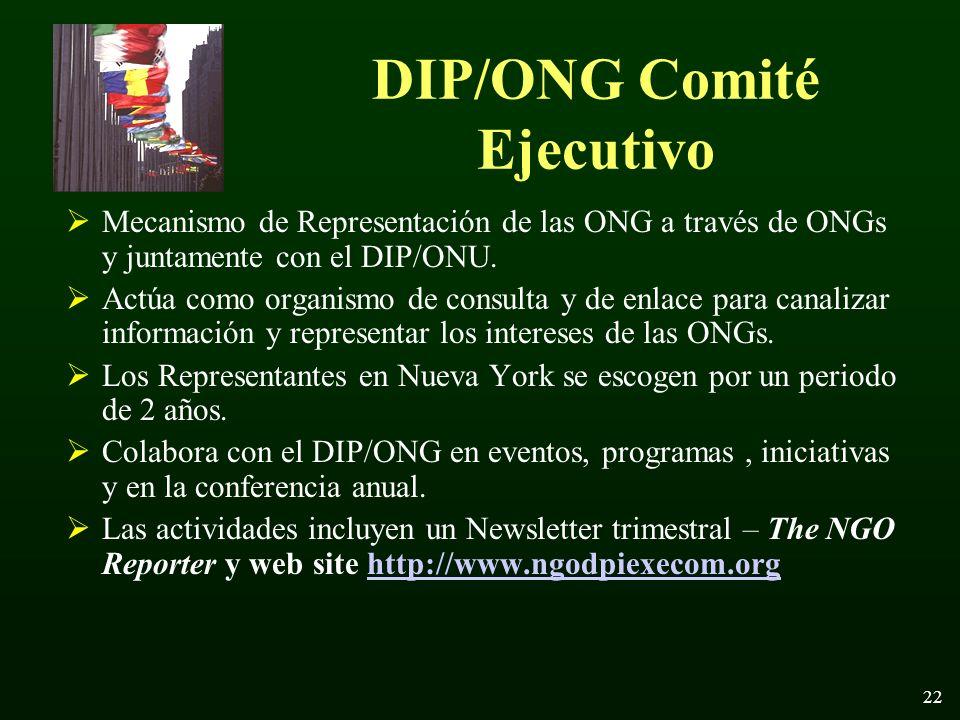 22 DIP/ONG Comité Ejecutivo Mecanismo de Representación de las ONG a través de ONGs y juntamente con el DIP/ONU.