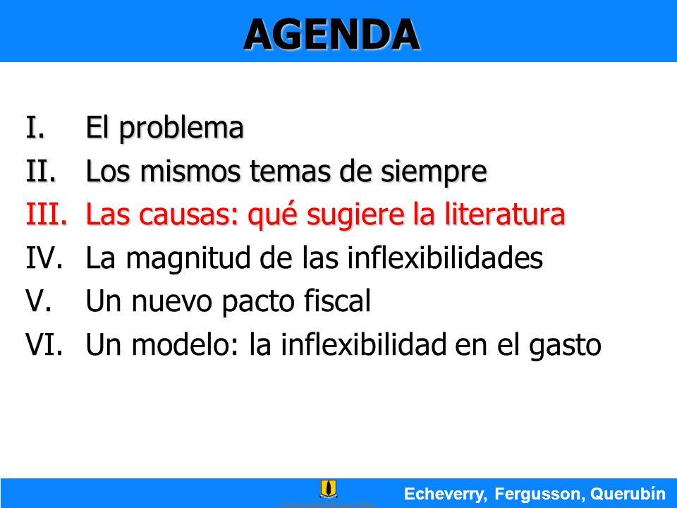 AGENDA I.El problema II.Los mismos temas de siempre III.Las causas: qué sugiere la literatura IV.La magnitud de las inflexibilidades V.Un nuevo pacto