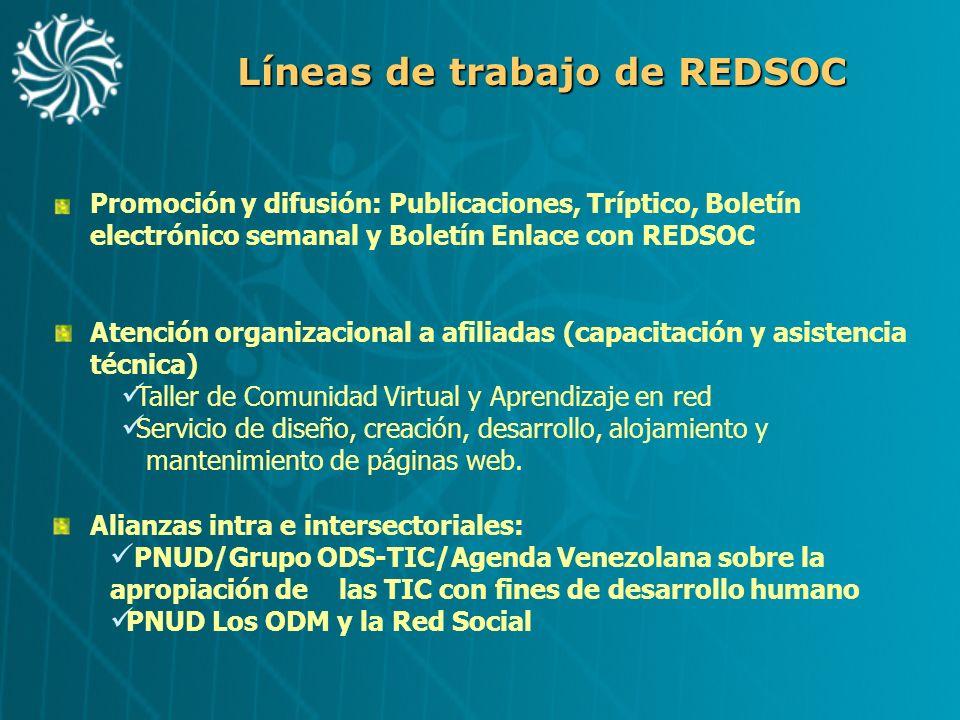 Líneas de trabajo de REDSOC Atención organizacional a afiliadas (capacitación y asistencia técnica) Taller de Comunidad Virtual y Aprendizaje en red S