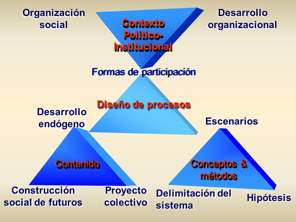 Organización social Desarrollo organizacional Formas de participación Contexto Político- Institucional Contexto Diseño de procesos Escenarios Proyecto