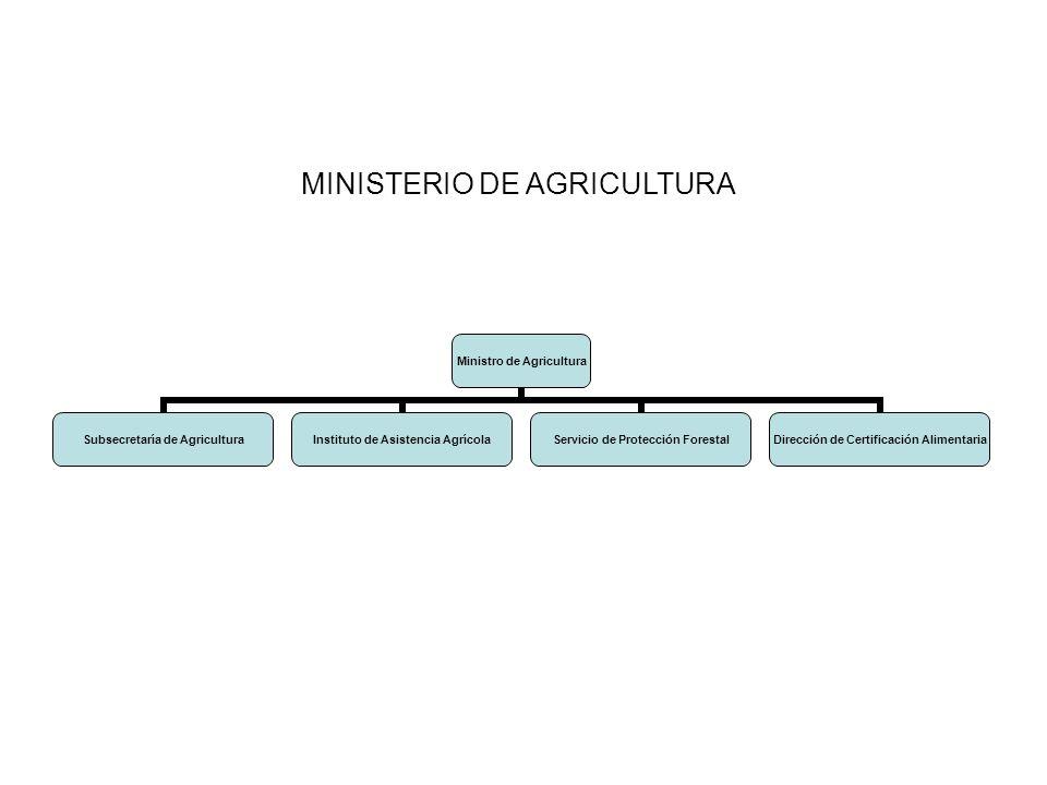 Ministro de Agricultura Subsecretaría de Agricultura Instituto de Asistencia Agrícola Servicio de Protección Forestal Dirección de Certificación Alime