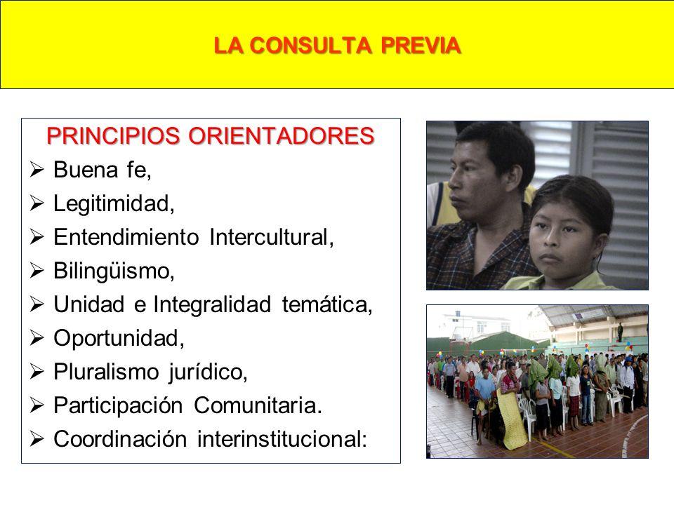 PRINCIPIOS ORIENTADORES Buena fe, Legitimidad, Entendimiento Intercultural, Bilingüismo, Unidad e Integralidad temática, Oportunidad, Pluralismo juríd