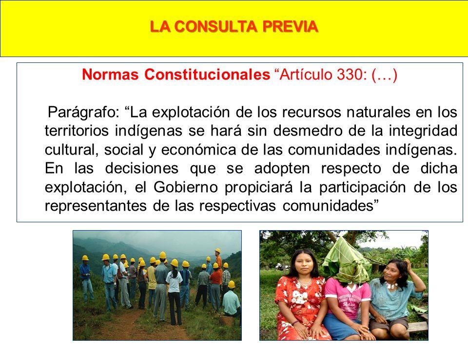 Normas Constitucionales Artículo 330: (…) Parágrafo: La explotación de los recursos naturales en los territorios indígenas se hará sin desmedro de la integridad cultural, social y económica de las comunidades indígenas.
