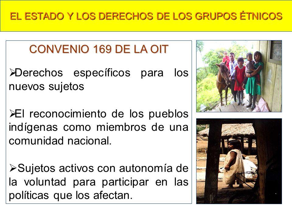 EL ESTADO Y LOS DERECHOS DE LOS GRUPOS ÉTNICOS CONVENIO 169 DE LA OIT Derechos específicos para los nuevos sujetos El reconocimiento de los pueblos indígenas como miembros de una comunidad nacional.