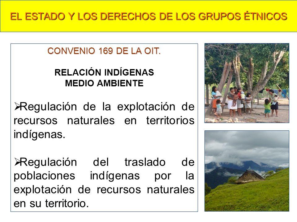 EL ESTADO Y LOS DERECHOS DE LOS GRUPOS ÉTNICOS CONVENIO 169 DE LA OIT. RELACIÓN INDÍGENAS MEDIO AMBIENTE Regulación de la explotación de recursos natu