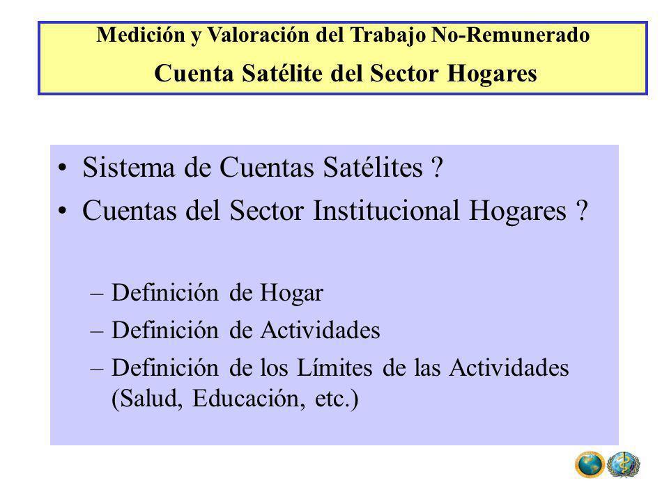 Sistema de Cuentas Satélites ? Cuentas del Sector Institucional Hogares ? –Definición de Hogar –Definición de Actividades –Definición de los Límites d
