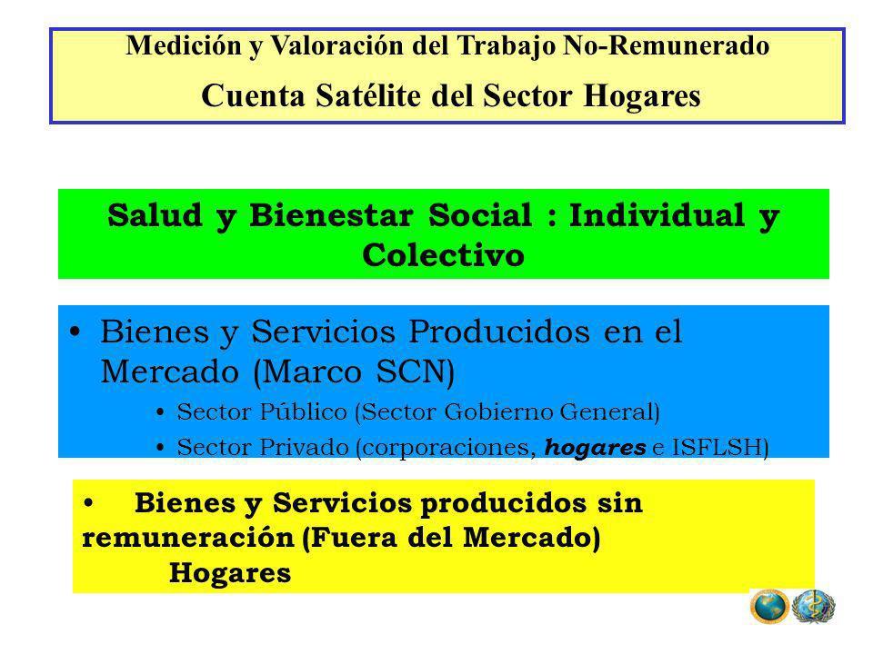 Bienes y Servicios Producidos en el Mercado (Marco SCN) Sector Público (Sector Gobierno General) Sector Privado (corporaciones, hogares e ISFLSH) Bien