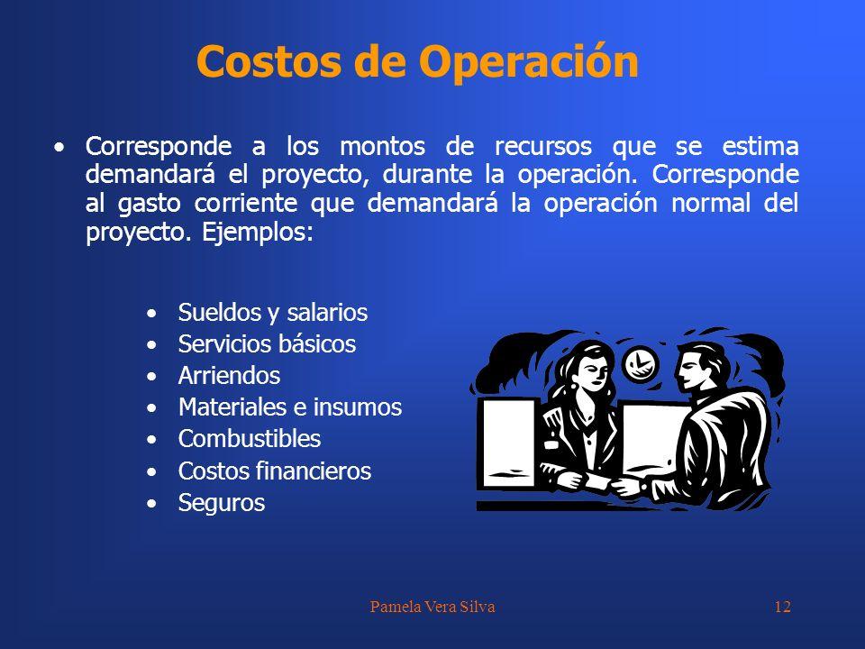Pamela Vera Silva12 Costos de Operación Sueldos y salarios Servicios básicos Arriendos Materiales e insumos Combustibles Costos financieros Seguros Co