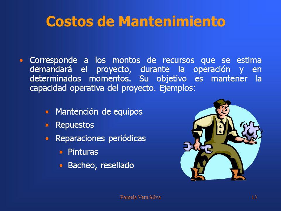 Pamela Vera Silva13 Costos de Mantenimiento Mantención de equipos Repuestos Reparaciones periódicas Pinturas Bacheo, resellado Corresponde a los monto