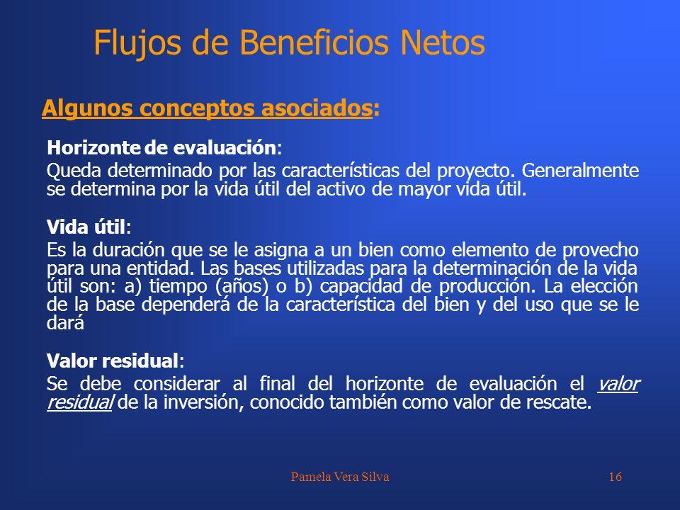 Pamela Vera Silva16 Horizonte de evaluación: Queda determinado por las características del proyecto. Generalmente se determina por la vida útil del ac