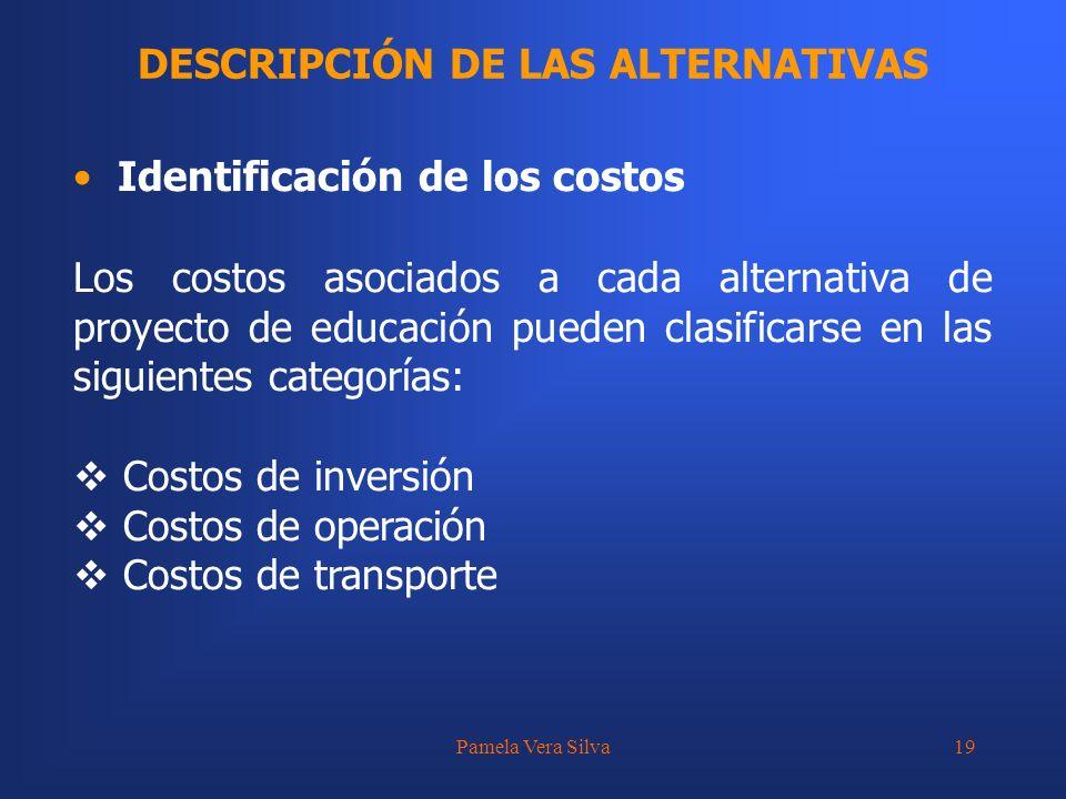 Pamela Vera Silva19 DESCRIPCIÓN DE LAS ALTERNATIVAS Identificación de los costos Los costos asociados a cada alternativa de proyecto de educación pued