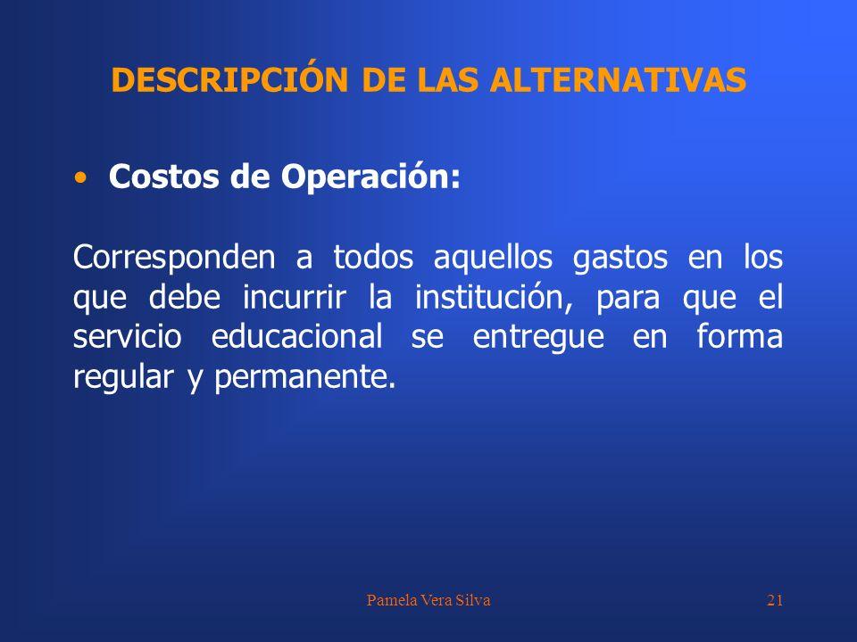 Pamela Vera Silva21 DESCRIPCIÓN DE LAS ALTERNATIVAS Costos de Operación: Corresponden a todos aquellos gastos en los que debe incurrir la institución,
