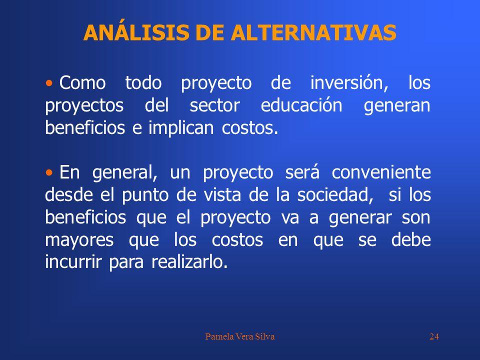 Pamela Vera Silva24 ANÁLISIS DE ALTERNATIVAS Como todo proyecto de inversión, los proyectos del sector educación generan beneficios e implican costos.