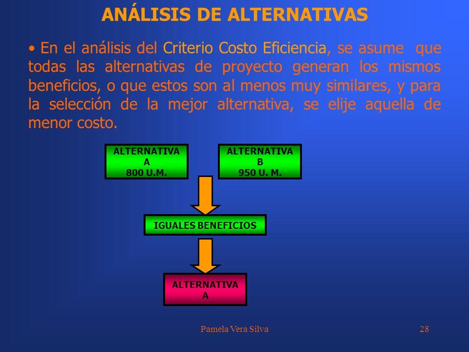 Pamela Vera Silva28 ANÁLISIS DE ALTERNATIVAS En el análisis del Criterio Costo Eficiencia, se asume que todas las alternativas de proyecto generan los