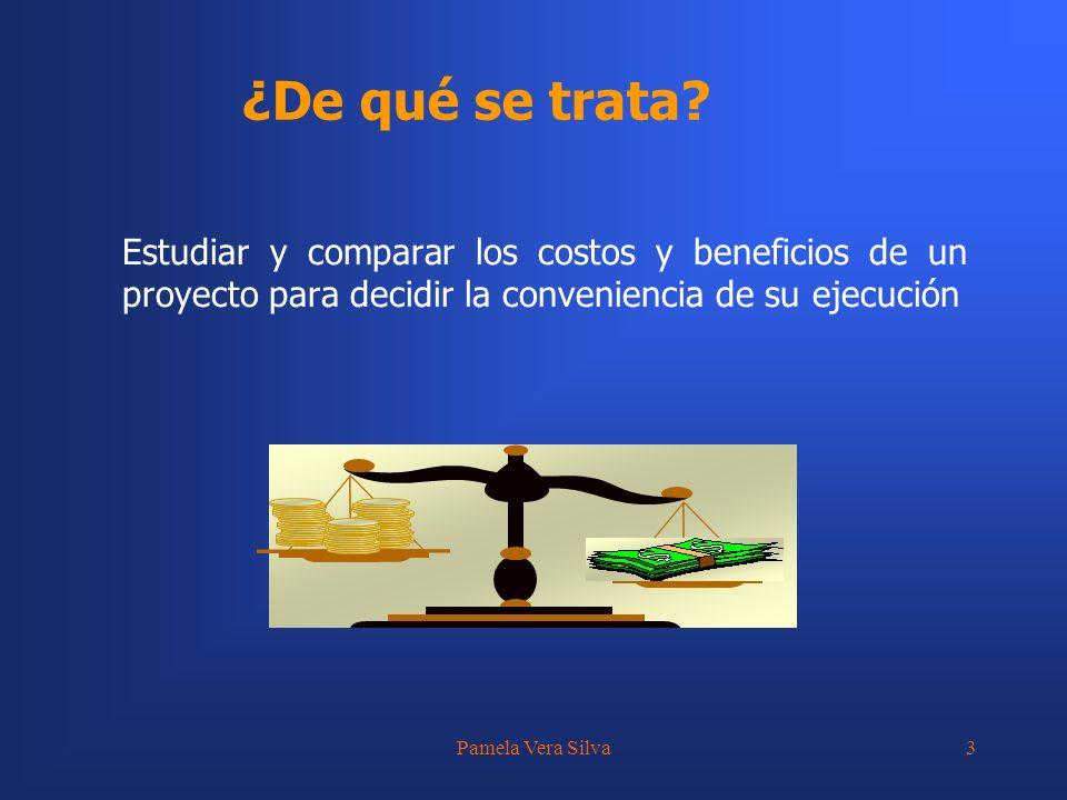 Pamela Vera Silva14 Estimación de los Costos Fuentes de información a nivel de perfil Costos de proyectos similares Costos unitarios conocidos Cotizaciones