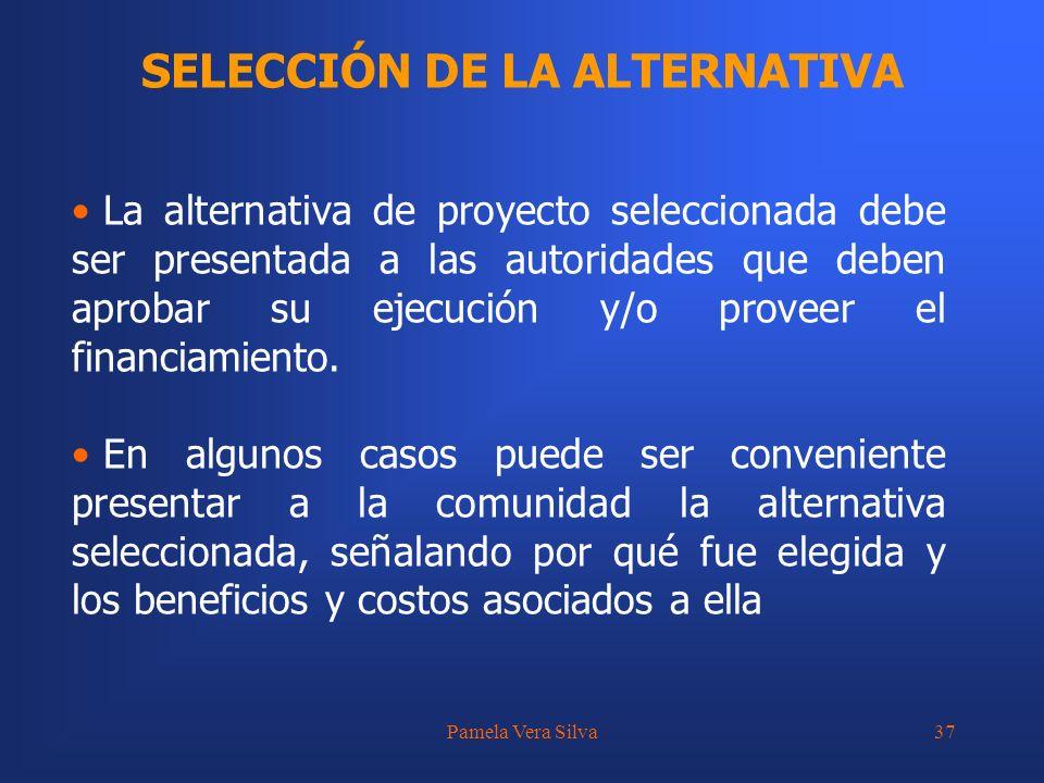 Pamela Vera Silva37 SELECCIÓN DE LA ALTERNATIVA La alternativa de proyecto seleccionada debe ser presentada a las autoridades que deben aprobar su eje