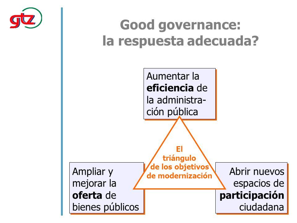 Problemas de good governance Promueve reformas de instituciones individuales.