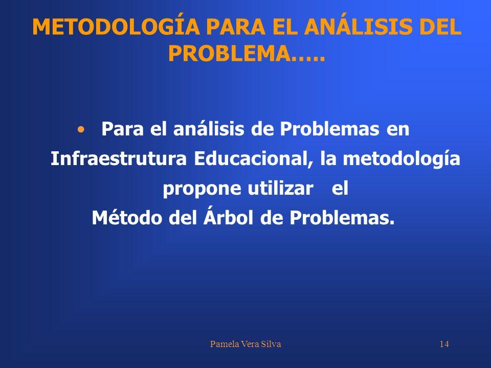 Pamela Vera Silva14 METODOLOGÍA PARA EL ANÁLISIS DEL PROBLEMA….. Para el análisis de Problemas en Infraestrutura Educacional, la metodología propone u