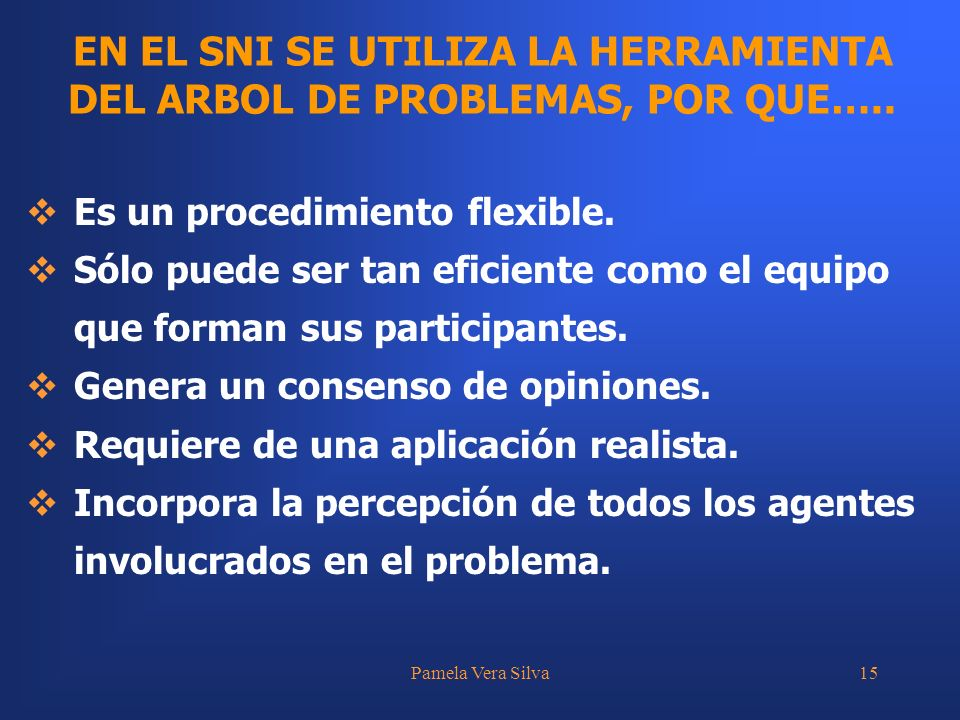 Pamela Vera Silva15 EN EL SNI SE UTILIZA LA HERRAMIENTA DEL ARBOL DE PROBLEMAS, POR QUE….. Es un procedimiento flexible. Sólo puede ser tan eficiente