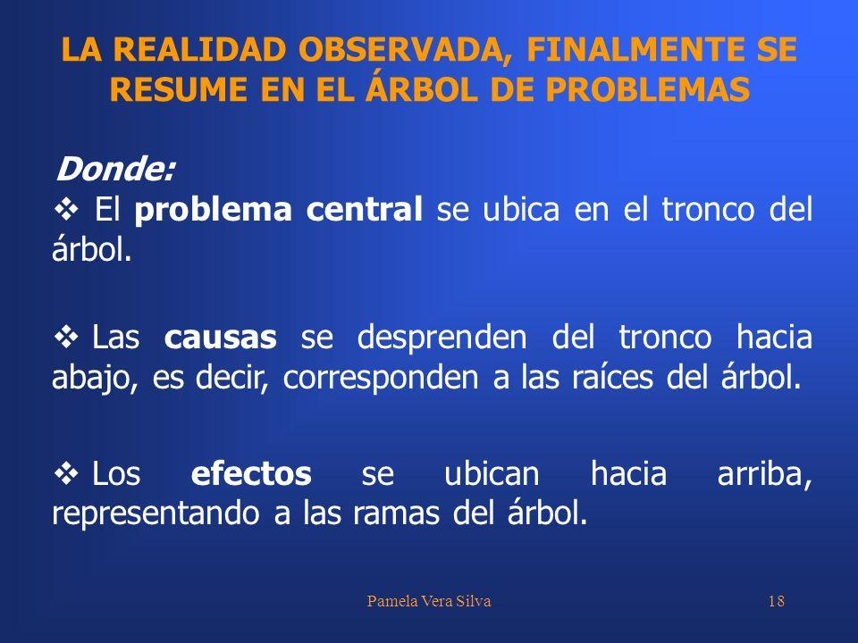 Pamela Vera Silva18 LA REALIDAD OBSERVADA, FINALMENTE SE RESUME EN EL ÁRBOL DE PROBLEMAS Donde: El problema central se ubica en el tronco del árbol. L