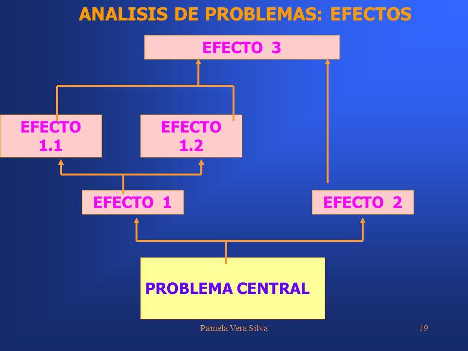 Pamela Vera Silva19 PROBLEMA CENTRAL EFECTO 3 EFECTO 1EFECTO 2EFECTO 1.1 EFECTO 1.2 ANALISIS DE PROBLEMAS: EFECTOS