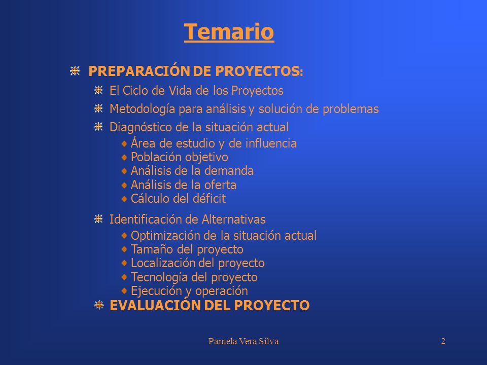 Pamela Vera Silva3 Diagnóstico de la Situación Actual: Problema Área de Estudio y Área de Influencia Análisis de la Demanda Análisis de la Oferta Determinación del Déficit Análisis de Alternativas.