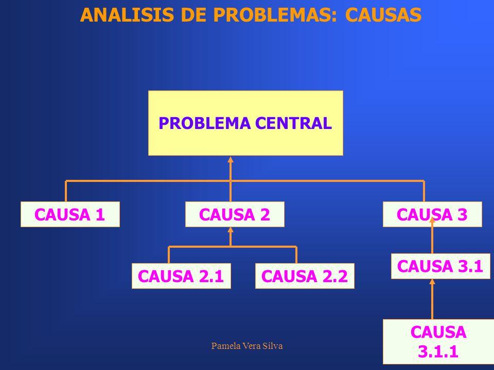 Pamela Vera Silva20 PROBLEMA CENTRAL ANALISIS DE PROBLEMAS: CAUSAS CAUSA 1CAUSA 2CAUSA 3 CAUSA 3.1 CAUSA 3.1.1 CAUSA 2.1CAUSA 2.2