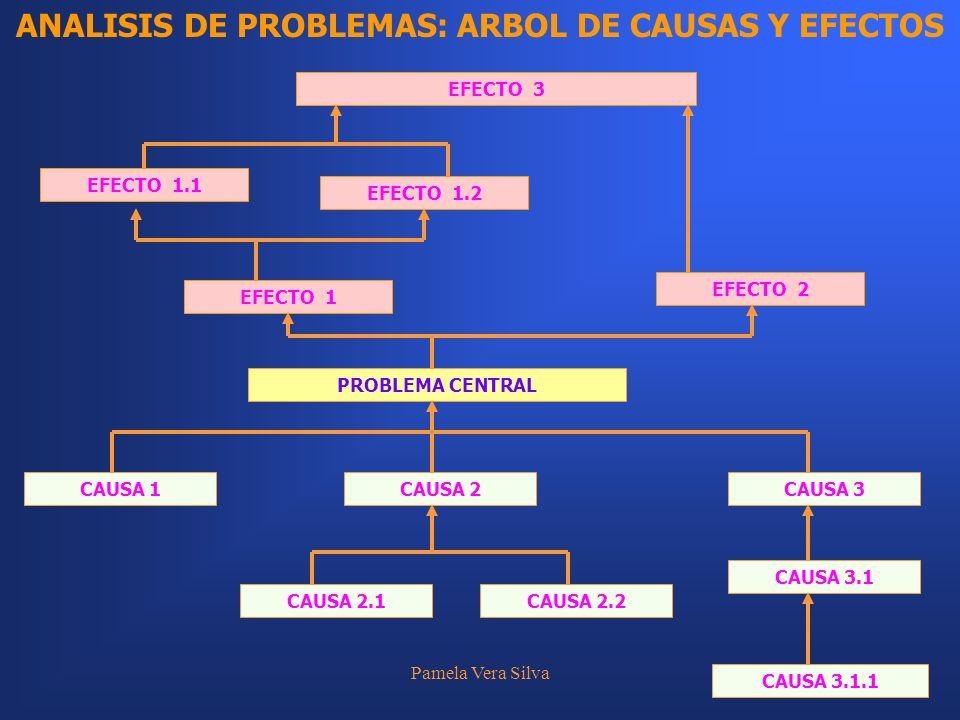 Pamela Vera Silva21 ANALISIS DE PROBLEMAS: ARBOL DE CAUSAS Y EFECTOS CAUSA 1 PROBLEMA CENTRAL CAUSA 2CAUSA 3 CAUSA 2.1CAUSA 2.2 CAUSA 3.1 CAUSA 3.1.1
