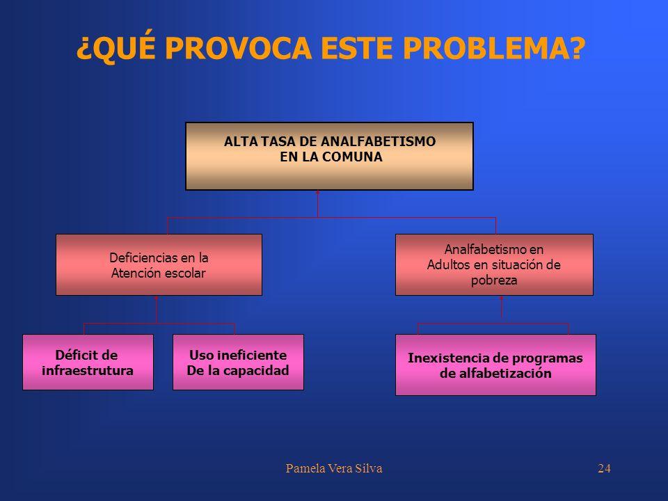 Pamela Vera Silva24 ¿QUÉ PROVOCA ESTE PROBLEMA? ALTA TASA DE ANALFABETISMO EN LA COMUNA Déficit de infraestrutura Uso ineficiente De la capacidad Inex