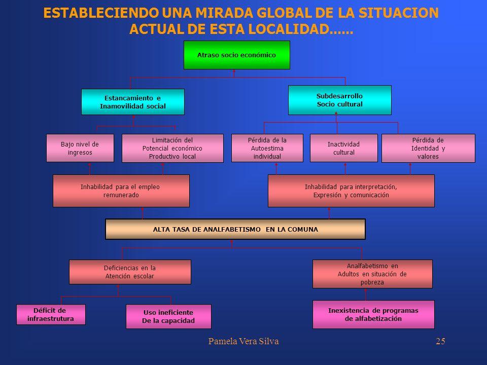 Pamela Vera Silva25 ESTABLECIENDO UNA MIRADA GLOBAL DE LA SITUACION ACTUAL DE ESTA LOCALIDAD...... Inhabilidad para el empleo remunerado Inhabilidad p