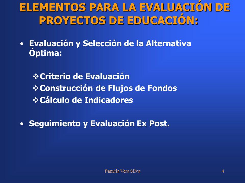 Pamela Vera Silva4 Evaluación y Selección de la Alternativa Óptima: Criterio de Evaluación Construcción de Flujos de Fondos Cálculo de Indicadores Seg