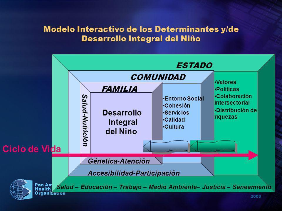 2003 Pan American Health Organization ESTADO COMUNIDAD FAMILIA Entorno Social Valores Políticas Servicios Salud – Educación – Trabajo – Medio Ambiente