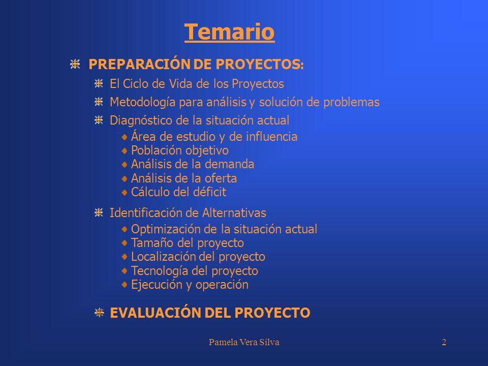 Pamela Vera Silva2 PREPARACIÓN DE PROYECTOS : El Ciclo de Vida de los Proyectos Metodología para análisis y solución de problemas Diagnóstico de la si