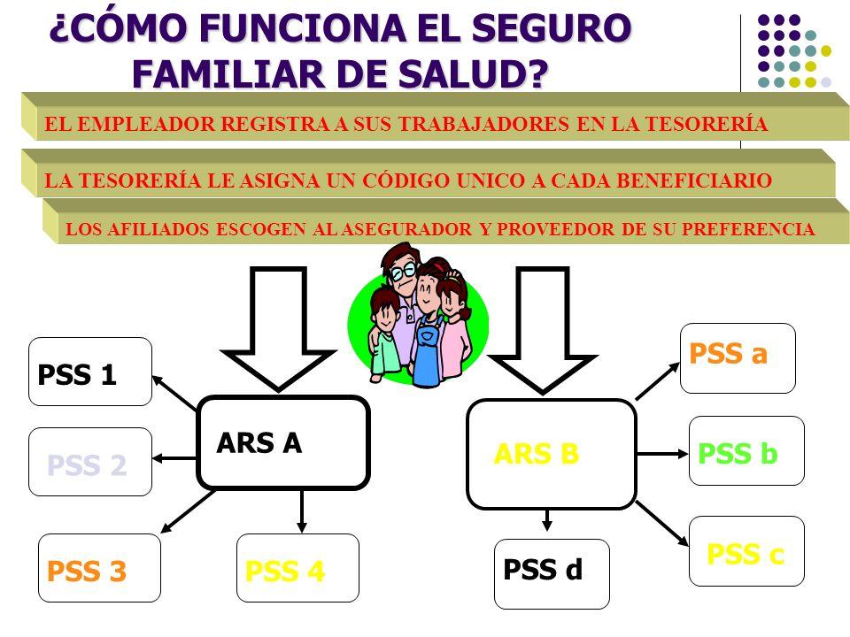 Seguro Familiar de Salud (SFS) (Art. 119) Riesgos que cubre: Promoción de la salud Prevención y tratamiento de las enfermedades La rehabilitación del