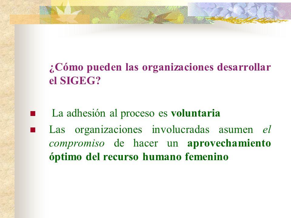 ¿Cómo pueden las organizaciones desarrollar el SIGEG? La adhesión al proceso es voluntaria Las organizaciones involucradas asumen el compromiso de hac