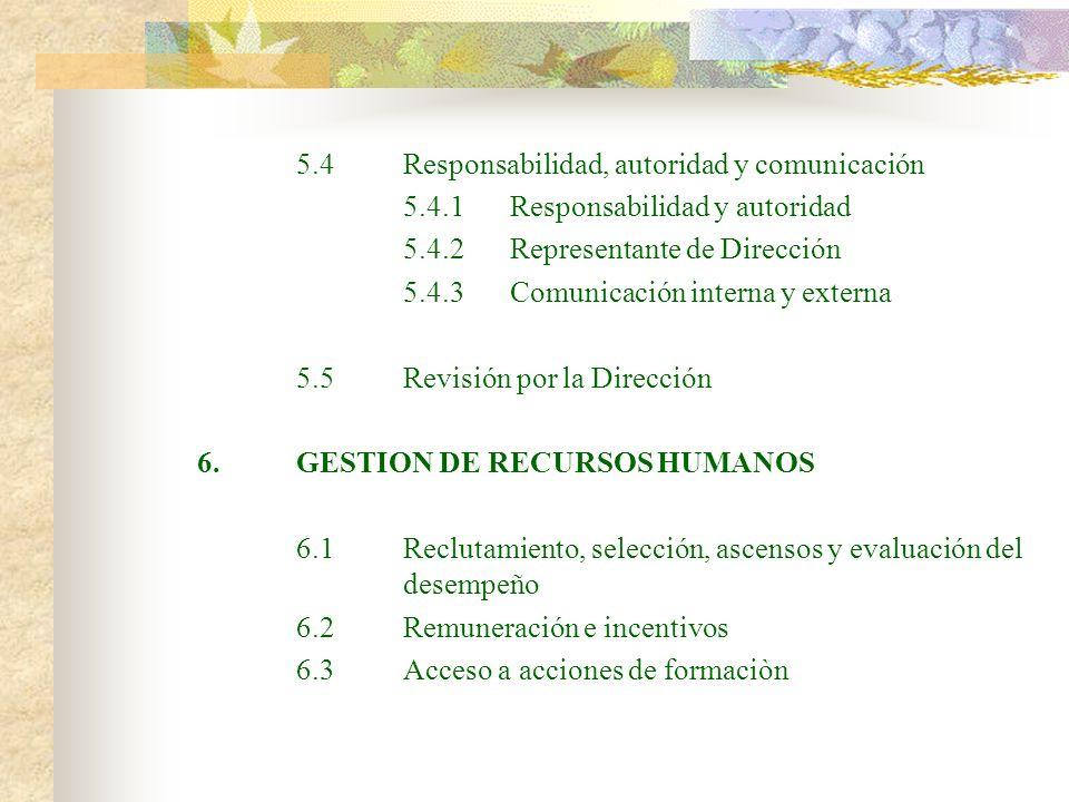 5.4Responsabilidad, autoridad y comunicación 5.4.1Responsabilidad y autoridad 5.4.2Representante de Dirección 5.4.3Comunicación interna y externa 5.5R