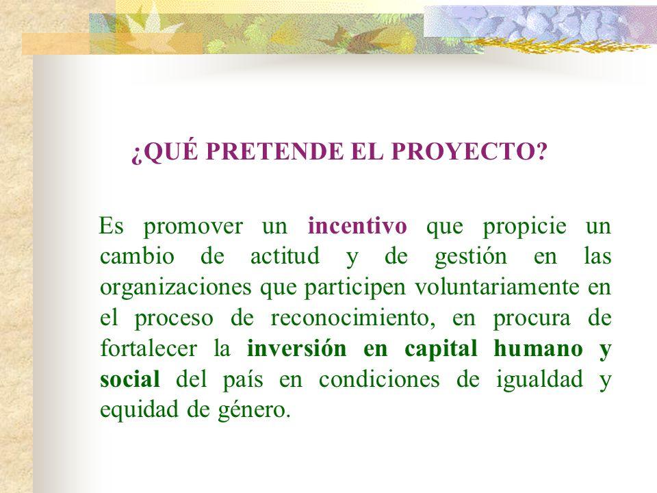 ANTECEDENTES 1.Sondeo de Buenas Prácticas Laborales (2001) 2.