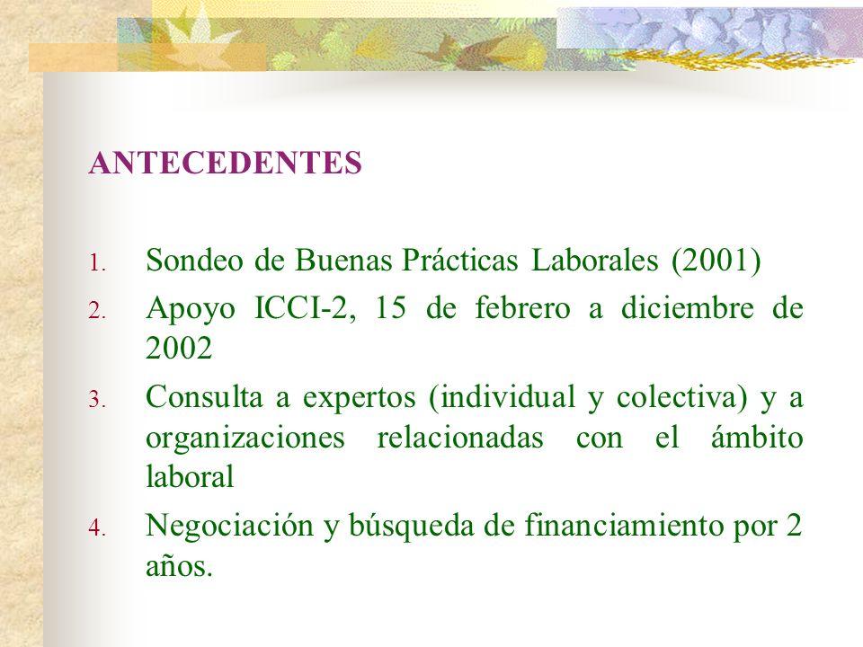 ANTECEDENTES 1. Sondeo de Buenas Prácticas Laborales (2001) 2. Apoyo ICCI-2, 15 de febrero a diciembre de 2002 3. Consulta a expertos (individual y co