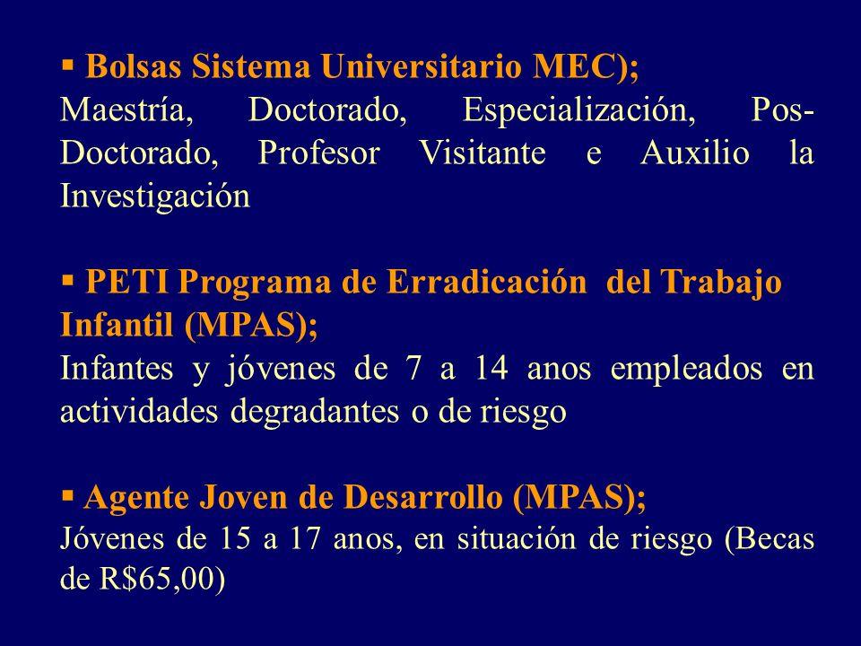 Bolsas Sistema Universitario MEC); Maestría, Doctorado, Especialización, Pos- Doctorado, Profesor Visitante e Auxilio la Investigación PETI Programa d
