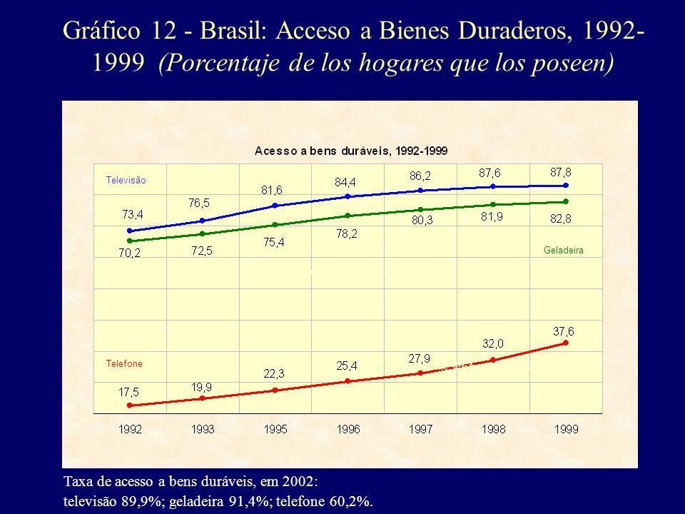Gráfico 12 - Brasil: Acceso a Bienes Duraderos, 1992- 1999 (Porcentaje de los hogares que los poseen) Taxa de acesso a bens duráveis, em 2002: televis