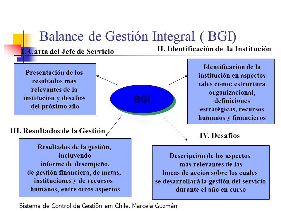 BGIBGI Balance de Gestión Integral ( BGI) Identificación de la institución en aspectos tales como: estructura organizacional, definiciones estratégicas, recursos humanos y financieros II.