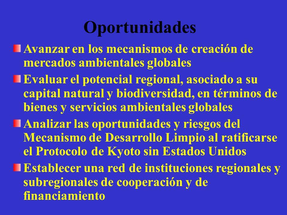 Oportunidades Avanzar en los mecanismos de creación de mercados ambientales globales Evaluar el potencial regional, asociado a su capital natural y bi