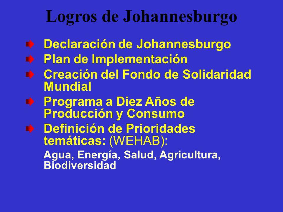 Logros de Johannesburgo Declaración de Johannesburgo Plan de Implementación Creación del Fondo de Solidaridad Mundial Programa a Diez Años de Producci