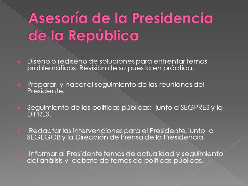 Aplicación de la potestad reglamentaria del Presidente de la República; dictado de reglamentos, decretos e instructivos presidenciales Actividad colegisladora del poder ejecutivo.