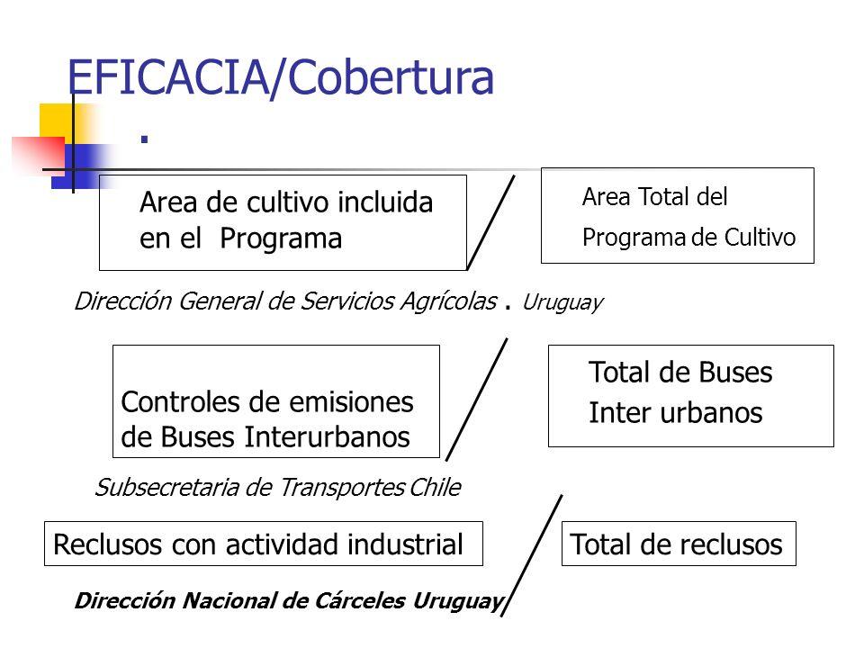 . EFICACIA/Cobertura Area de cultivo incluida en el Programa Area Total del Programa de Cultivo Dirección General de Servicios Agrícolas. Uruguay Cont