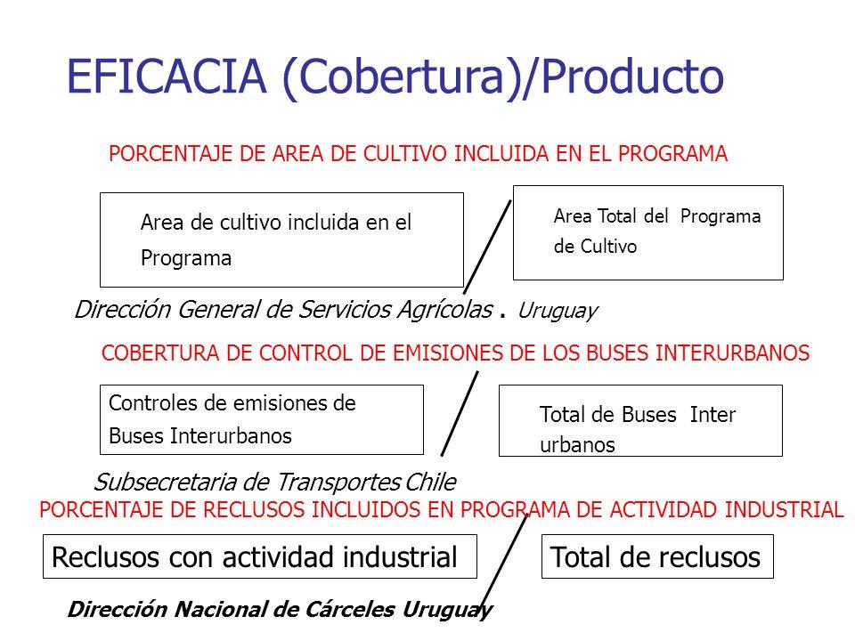 EFICACIA (Cobertura)/Producto Area de cultivo incluida en el Programa Area Total del Programa de Cultivo Dirección General de Servicios Agrícolas.
