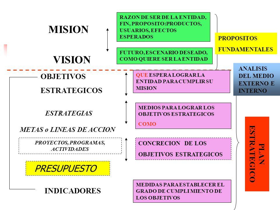 13 EL proceso de Planificación Estratégica