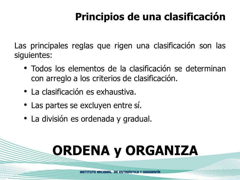 Principios de una clasificación Las principales reglas que rigen una clasificación son las siguientes: Todos los elementos de la clasificación se dete