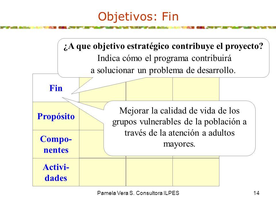 Pamela Vera S. Consultora ILPES14 Objetivos: Fin Fin Propósito Compo- nentes Activi- dades ¿A que objetivo estratégico contribuye el proyecto? Indica